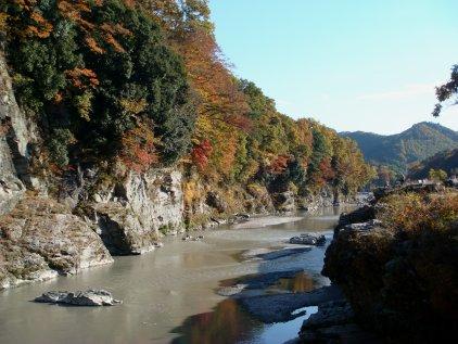 iwadatami4.jpg