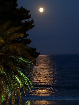 moon0818.jpg