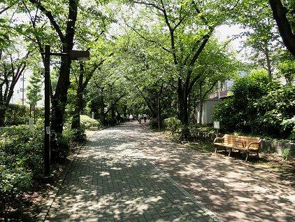 ryokudou_park.jpg