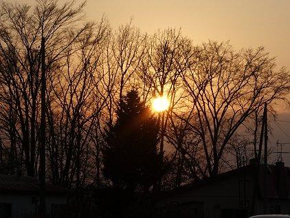 sunset1114.jpg
