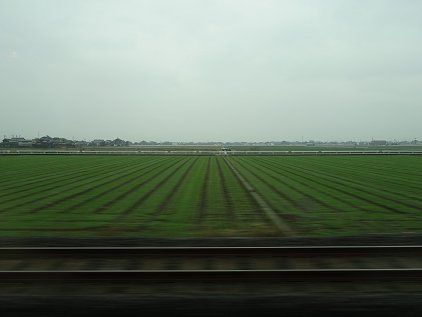 yamaguchi_usi.jpg