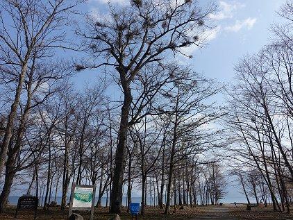 bifue_campsite.jpg