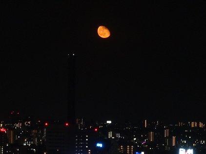 moon0504.jpg