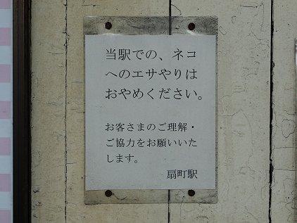 neko_esa.jpg
