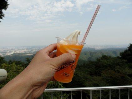 orange_fl.jpg