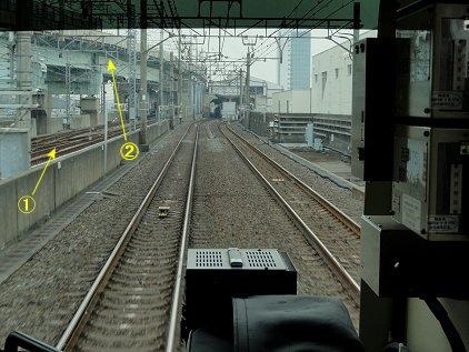 tatumi_kiba.jpg